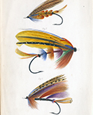 image for Bruce P. Dancik Collection of Angling Books